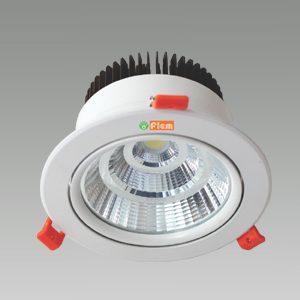 ADJUSTABLE (COB)LED DOWN LIGHT
